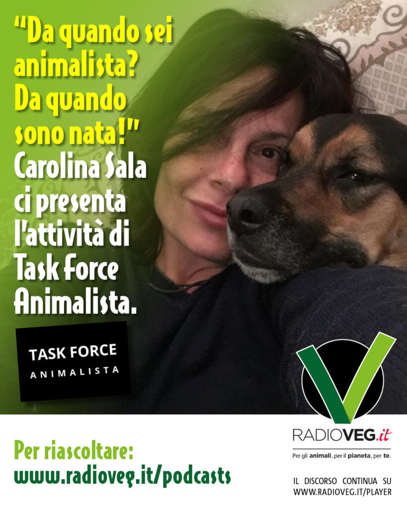 Movimento Task Force Animalista