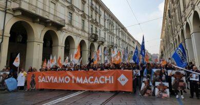 La manifestazione torinese di Ottobre 19