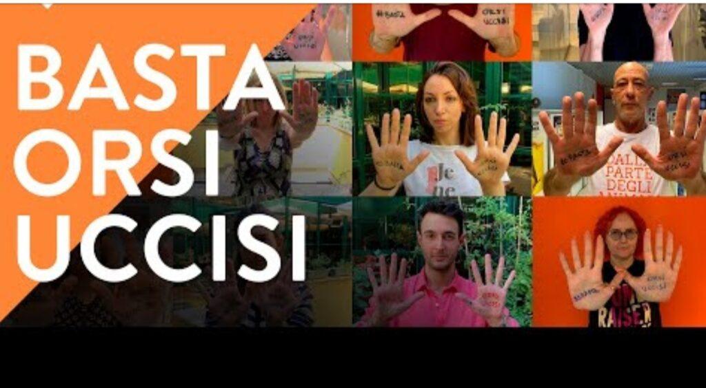 #BastaOrsiUccisi