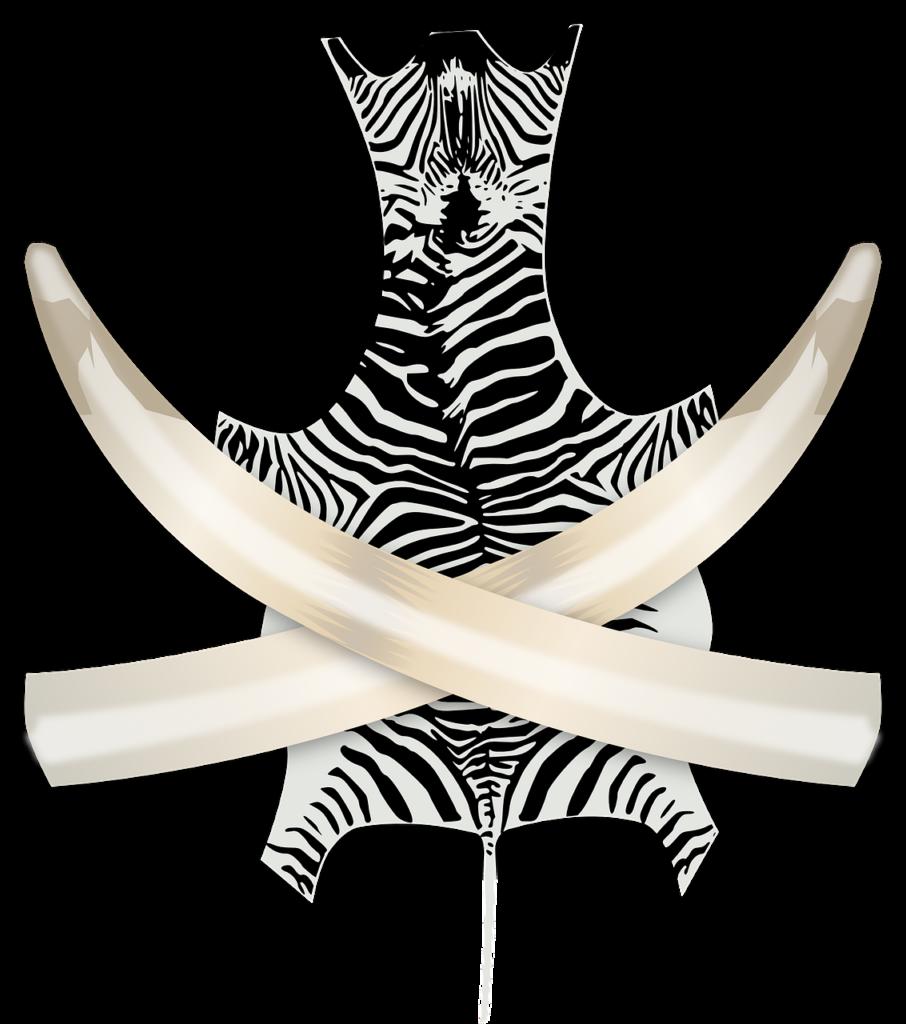 foto pixabay trofei di caccia