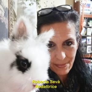 ROBERTA SEVA'